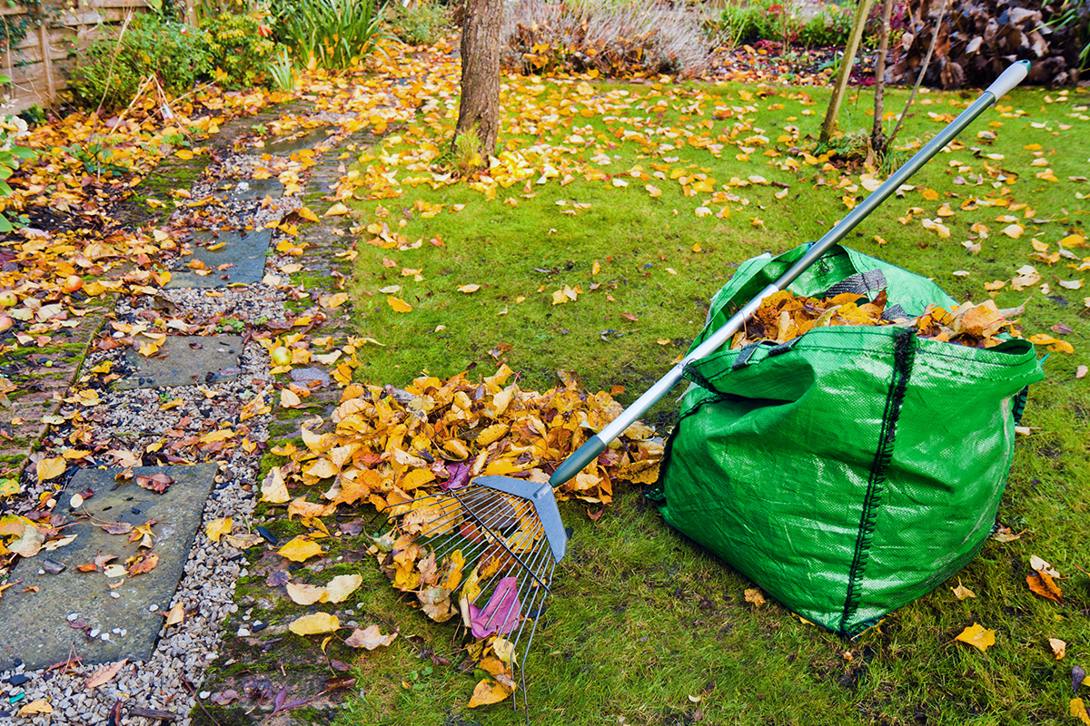 Fall maintenance for property managers